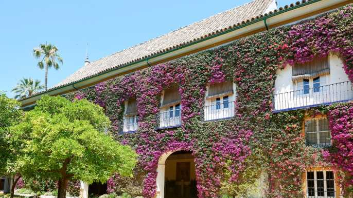 Seville: Las Dueñas Palace Ticket and Audioguide