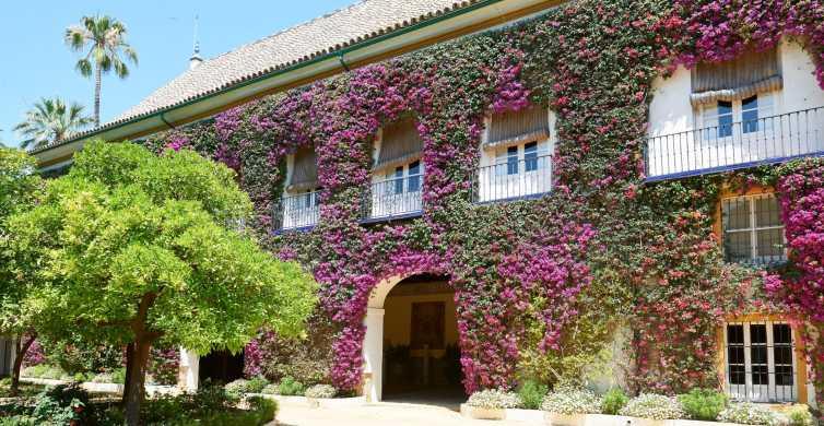 Séville: billet pour le palais Las Dueñas avec audio-guide