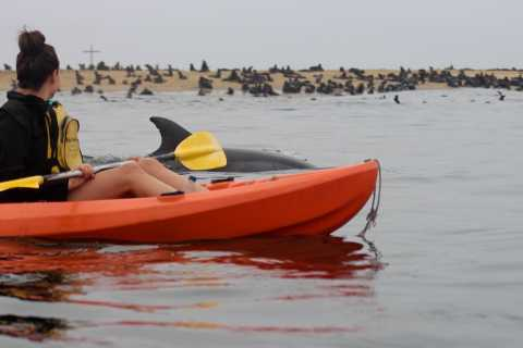 Kayaking and Sandwich Harbour Combo Tour