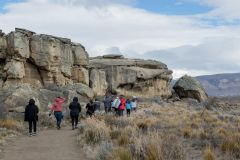 El Calafate: Excursão Panorâmica com Punta Walichu