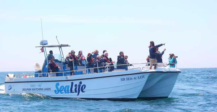 Lagos: Dolphin Watching with Marine Biologists