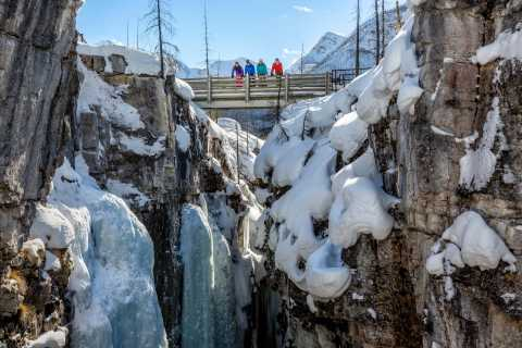 Banff: Marble Canyon Snowshoeing in Kootenay National Park