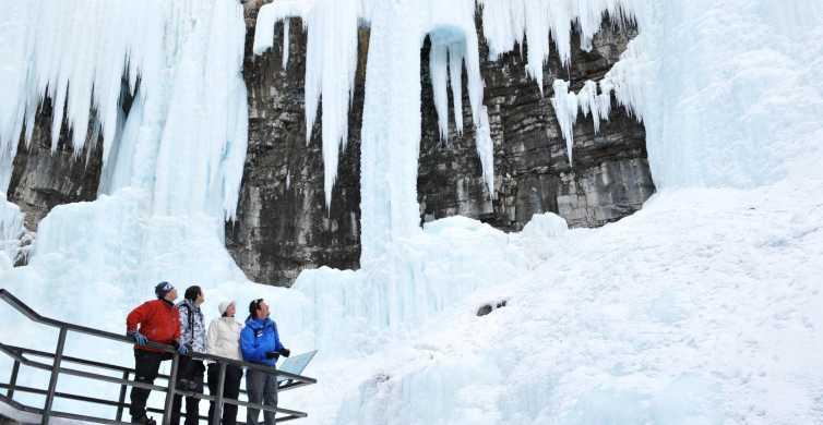 Banff: Morning or Afternoon Johnston Canyon Icewalk
