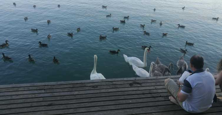 Budapest: Private Tagestour am Plattensee und Herend