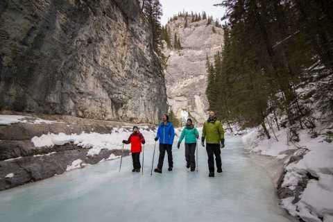 Banff: Grotto Canyon Icewalk