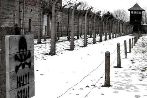 From Krakow: Auschwitz-Birkenau and Wieliczka Salt Mine Tour