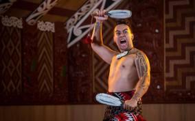 Auckland: Maori Cultural Experience Tour