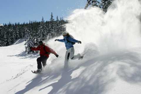Bend: Half-Day Snowshoe Tour in the Cascade Mountain Range