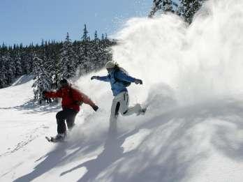 Kurve: Halbtägige Schneeschuhtour in der Cascade-Bergkette