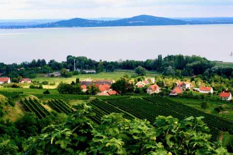 From Budapest: Somló and Northern Balaton Wine Day Trip