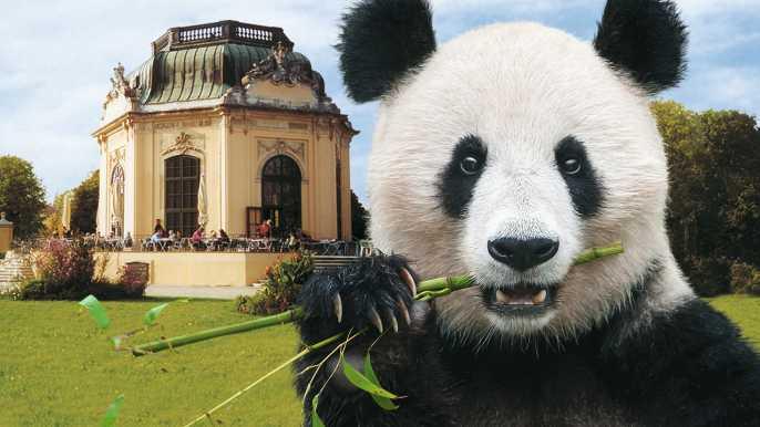 Vienna: Skip-the-line Tickets for Schönbrunn Zoo