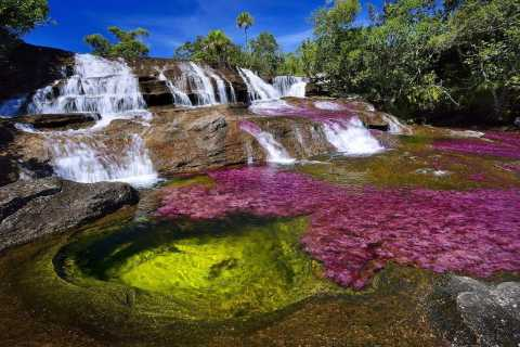 From Bogotá: 3- or 4-Day Trip to Caño Cristales with Flight