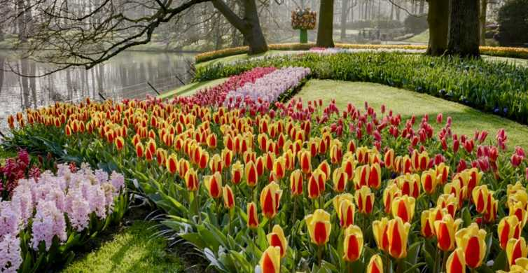 Keukenhof and Amsterdam Castle: Small Group or Private Tour