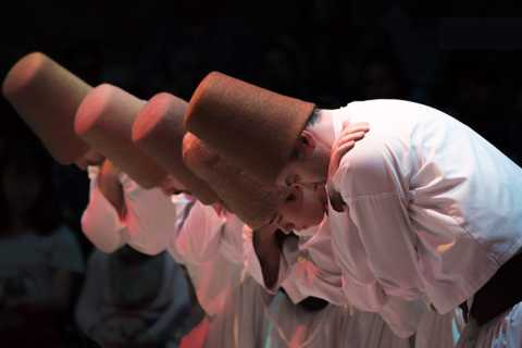 Istanbul: Whirling Dervishes Show with Hotel Transfer