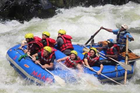 From Kasane: Full-Day White Water Rafting