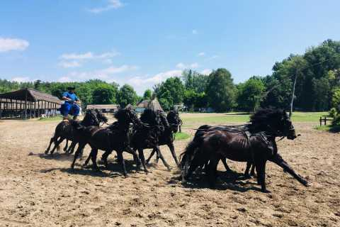 Budapest: Puszta Countryside Tour with Horse Show and Lunch
