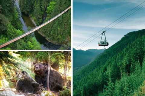 North Shore Capilano Suspension Bridge & Grouse Mountain