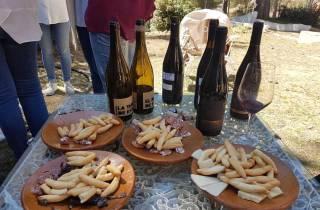 Ab Valencia: Weintour & Mittagessen in Utiel-Requena