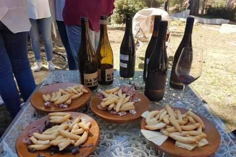 From Valencia: Utiel-Requena Wine Tour and Traditional Lunch