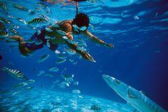 De Punta Cana: meio dia Reef Explorador do Posto