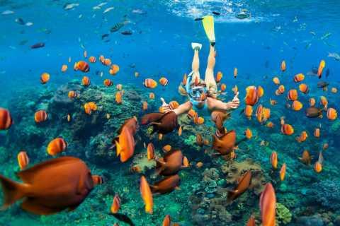 Charlotte Amalie: Virgin Islands Snorkeling and Boating Tour