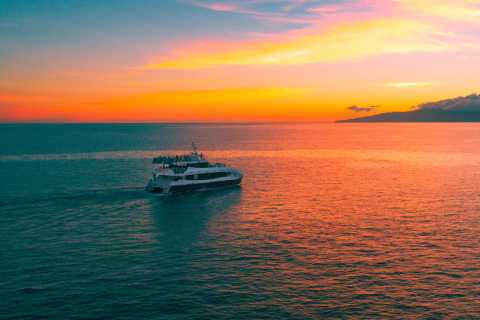 Maui: Sunset Dinner Cruise from Ma'alaea Harbor with Drinks
