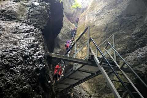 From Brasov: Day Trip to the Seven Ladders Canyon