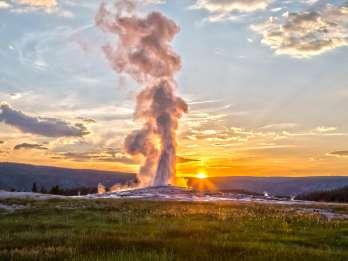 Jackson: Yellowstone Old Faithful, Lower Loop & Tierwelt. Foto: GetYourGuide