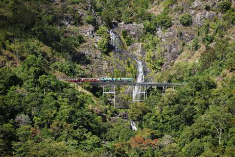Kuranda Half Day Tour from Cairns
