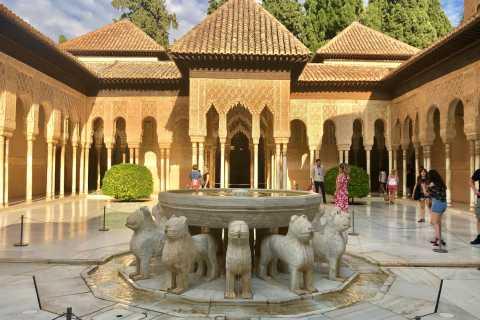 Alhambra: tour privado con entrada prioritaria
