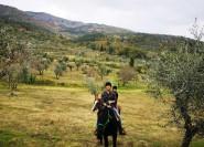 Von Florenz: Ausritt und Olivenöl Tour mit Mittagessen