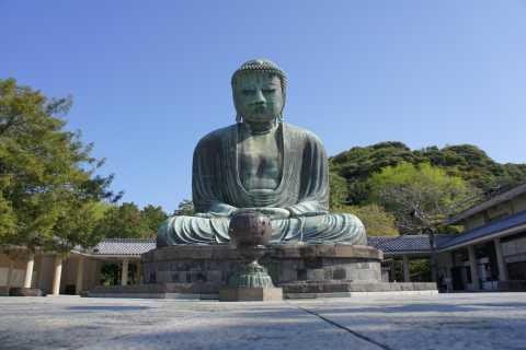 Da Tokyo: tour guidato privato dei templi di Kamakura
