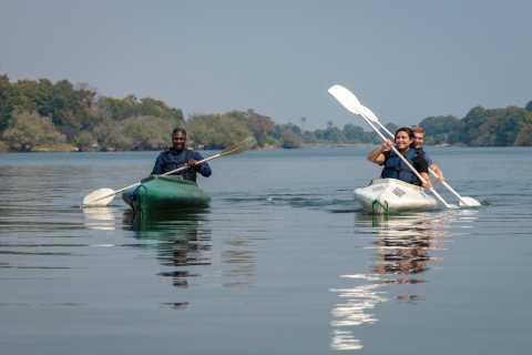 From Livingstone: Full or Half Day Canoe Safari
