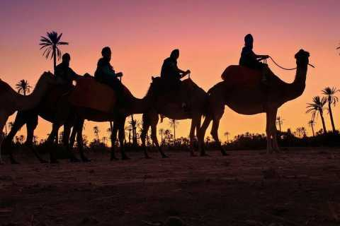 Marrakech Palmeraie: Sunset Camel Ride