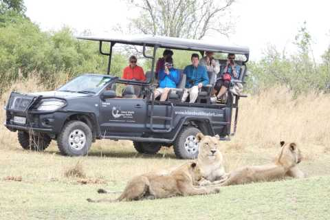 From Maun: Moremi Game Reserve Day Trip