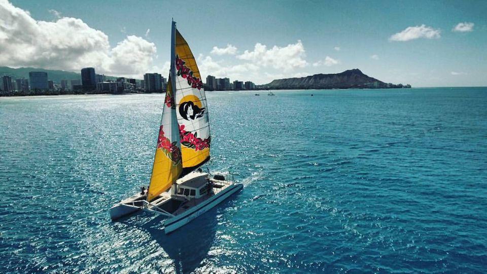 Waikiki Beach: Eco-Friendly Morning Whale Watching Excursion