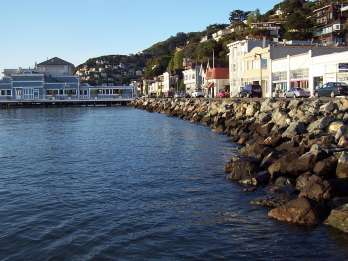 San Francisco: Muir Woods, Sausalito und Wine Country Tour