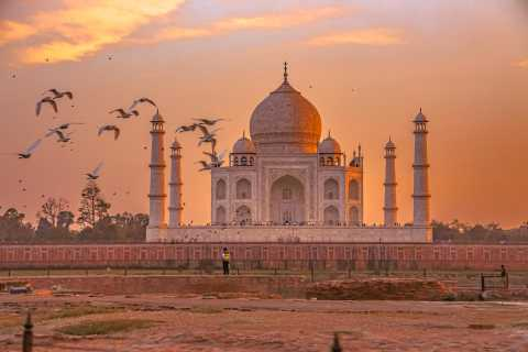 From Agra: Private Taj Mahal and Agra Fort Half-Day Tour