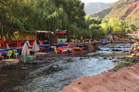 From Marrakech: Half-Day Trip to the Atlas Mountains