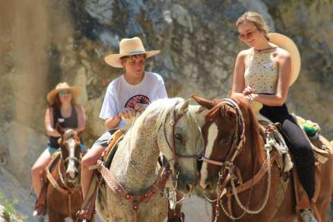 Los Cabos: The Great Fandango Horseback Riding Adventure