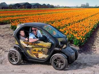 Ab Lisse: Audioguide-Tour Tulpenfelder für Selbstfahrer