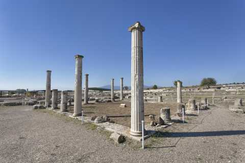 From Thessaloniki: Pella and Vergina Full-Day Tour