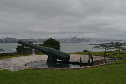 Auckland: Full-Day City Highlights Tour