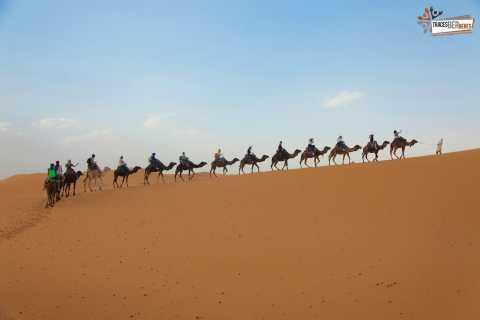 From Marrakech: Sahara Desert 3-Day Group Tour
