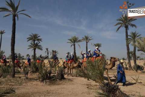Marrakech: Camel Trek