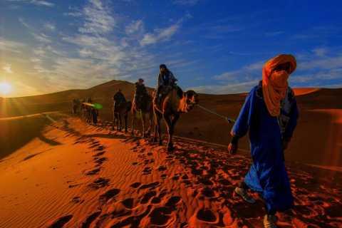 From Marrakesh: 2-Day Desert Zagoura Tour