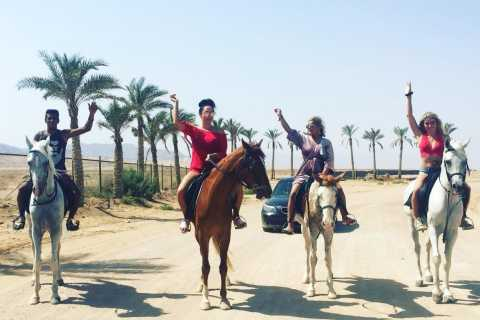 Sharm El Sheikh: Desert Safari on Horseback