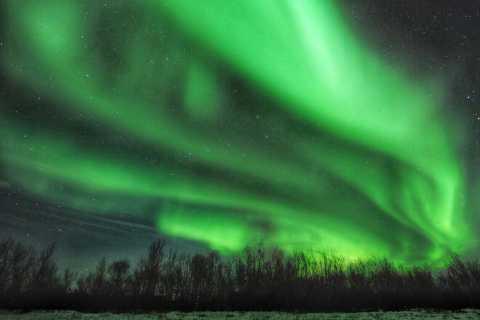 Rovaniemi: Northern Lights Snowmobile Sleigh with Picnic