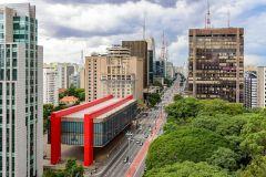 Excursão Particular de 5 Horas em São Paulo