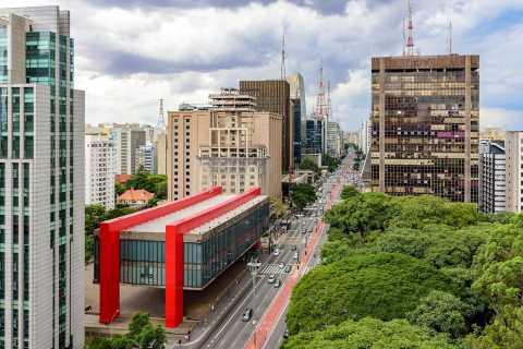 São Paulo City: 5-Hour Private Tour